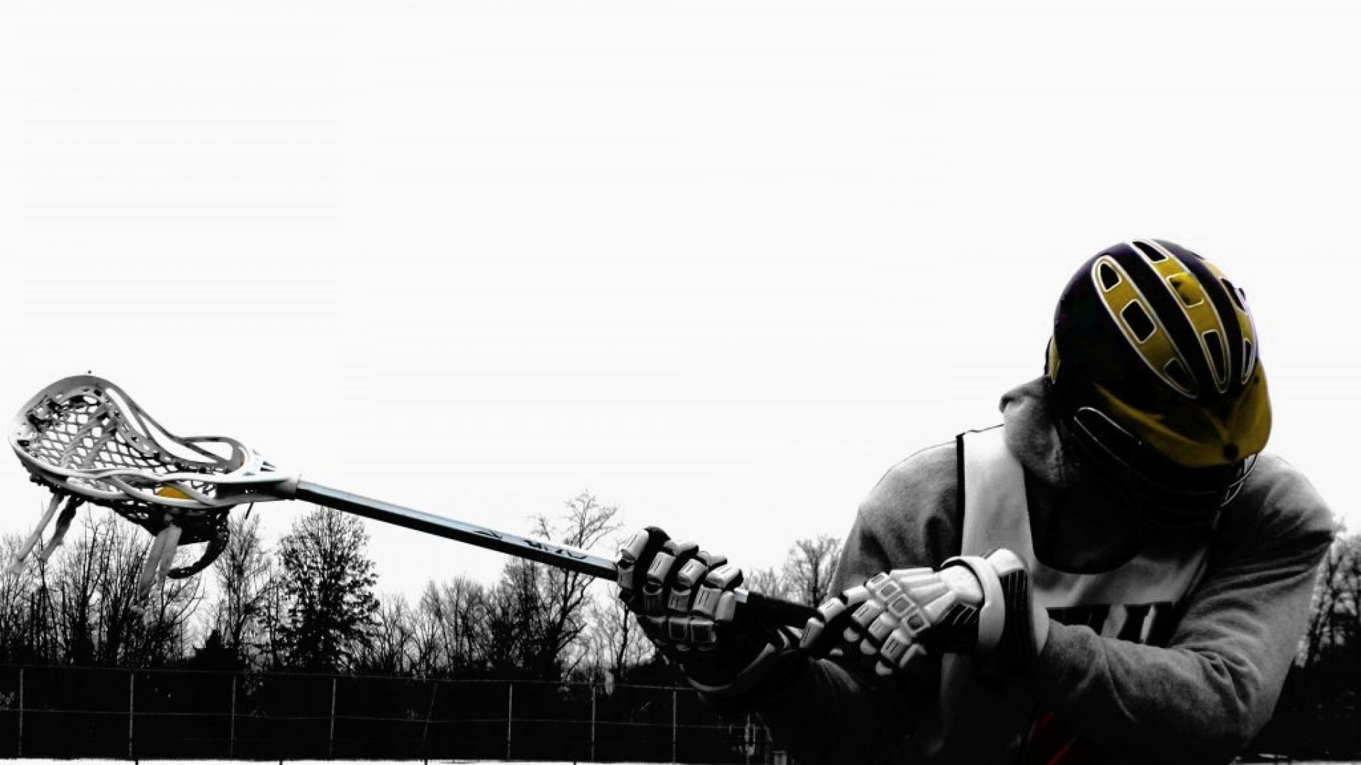 Nürnberg Lacrosse