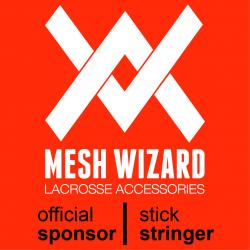 Meshwizard_Sponsor_Banner_250_250